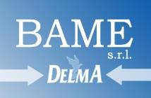 ворота Delma